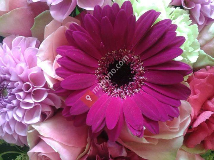 Halmstad blomster