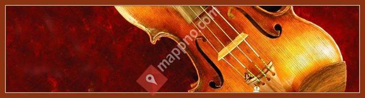Viken Violiner